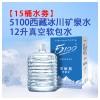 15桶 x 12L 5100家庭装软包桶装水